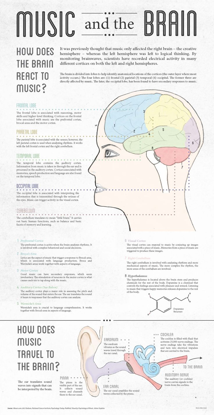 How Music Affects The Brain Graphic Design