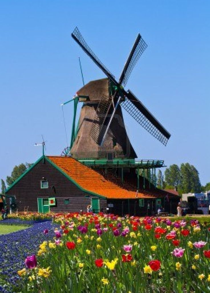 I want to live in a windmill in Holland someday.