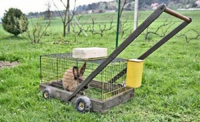 Funny weird cheap lawn mower