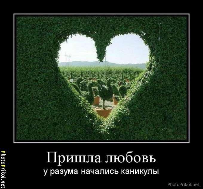 Любовь приколы и картинки