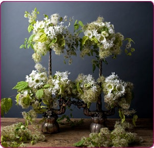 Beautiful white and green!