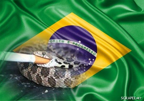 SOLARIS                           : ACORDA POVO BRASILEIRO PORQUE A COBRA ESTÁ FUMANDO...