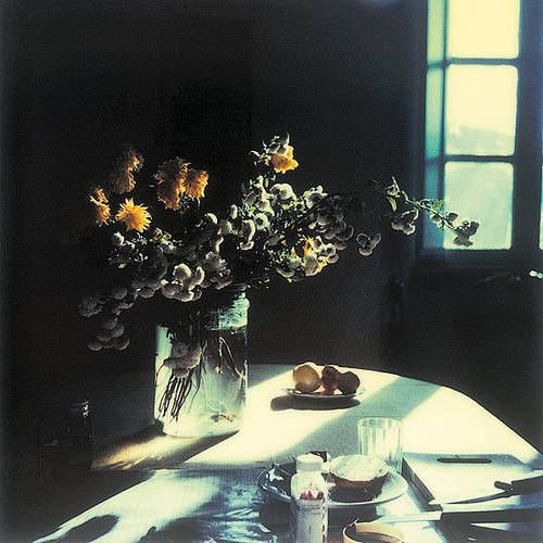 Andrei Tarkovsky's polaroids  http://www.pinterest.com/annesiegel/tarkovsky-polaroids/