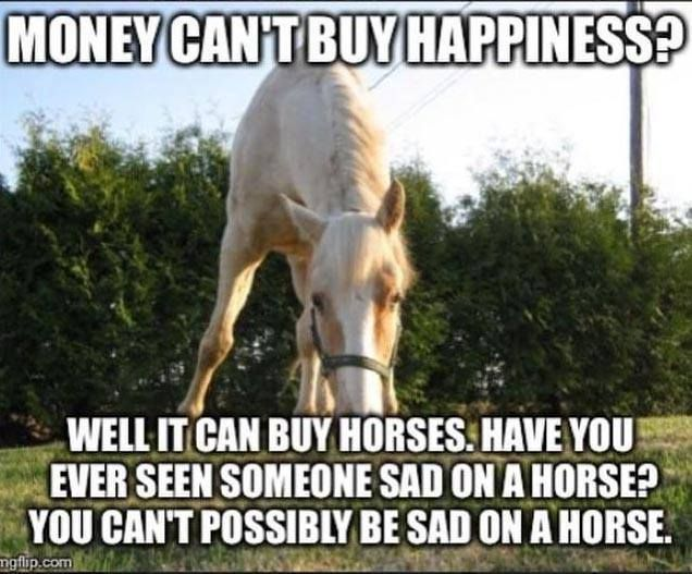 So true. I've been upset to the point of crying and when I get on Lucy and ride I start smiling and am happy. Love my girl