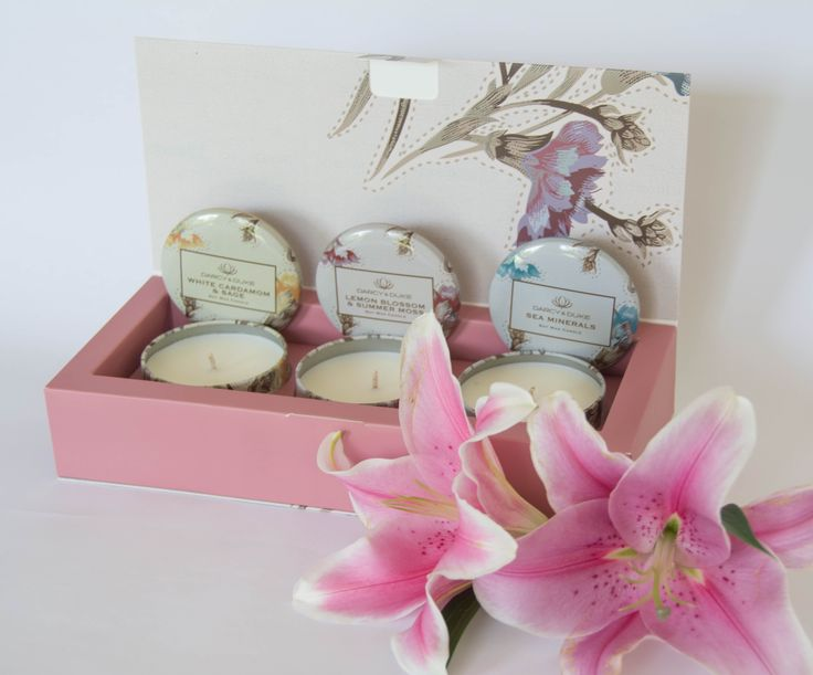 Three mini scented natural soy candles, by Darcy & Duke. A great way to try different scents. Shop online @Gableandjack