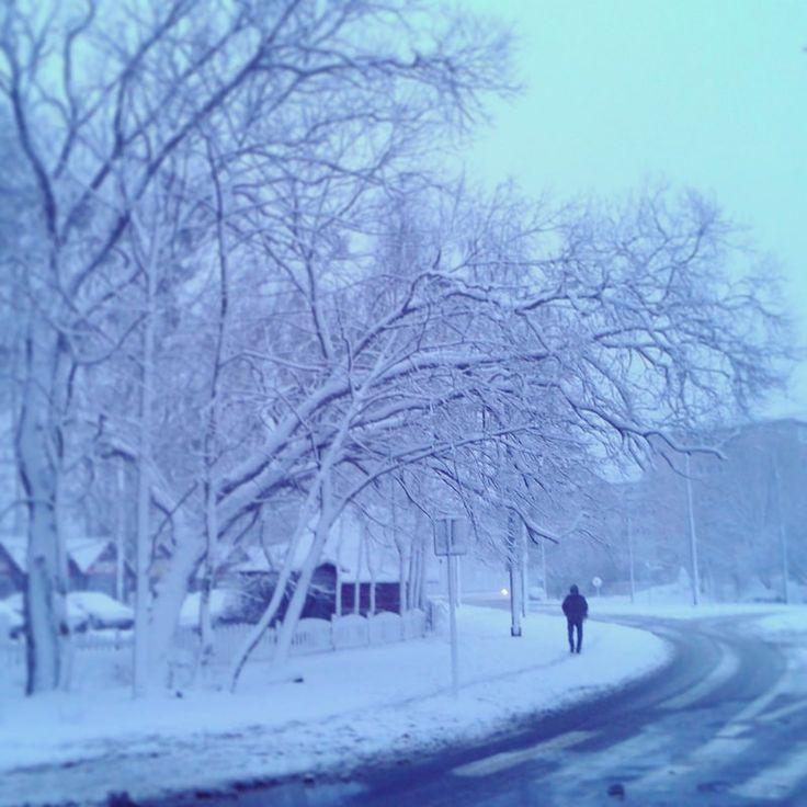 .. and although the winter is severe and cold, you can not resist temptation to jump into the snowdrift! / .. i chociaż zima jest sroga i mroźna, nie można się oprzeć żeby nie wskoczyć w zaspę śniegu!