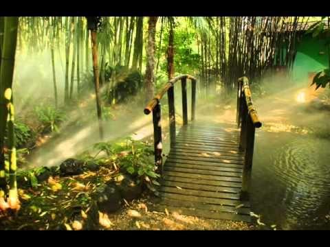 Meditación Guiada: ACTIVAR LA GLÁNDULA PINEAL (Técnica de la conciencia ...15 min