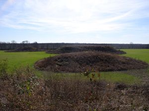 Ancient American Indian burial mounds in southern Illinois have been damaged and possibly looted, prompting the state's historical agency to call for the public's help in identifying the culprits.Burial Mounds, States Historical, Mounds Site, Historical Agency, Mounds Historical, Herbs Roe, Southern Illinois, Historical Site, Kincaid Mounds