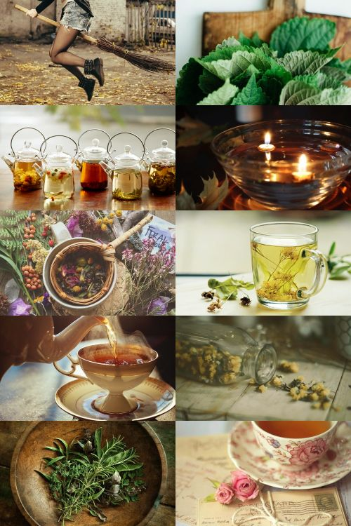 Tea Witch Aesthetic ; requested by @teawitchjoan Etsy | RedBubble | Society6 | DeviantArt | GoFundMe