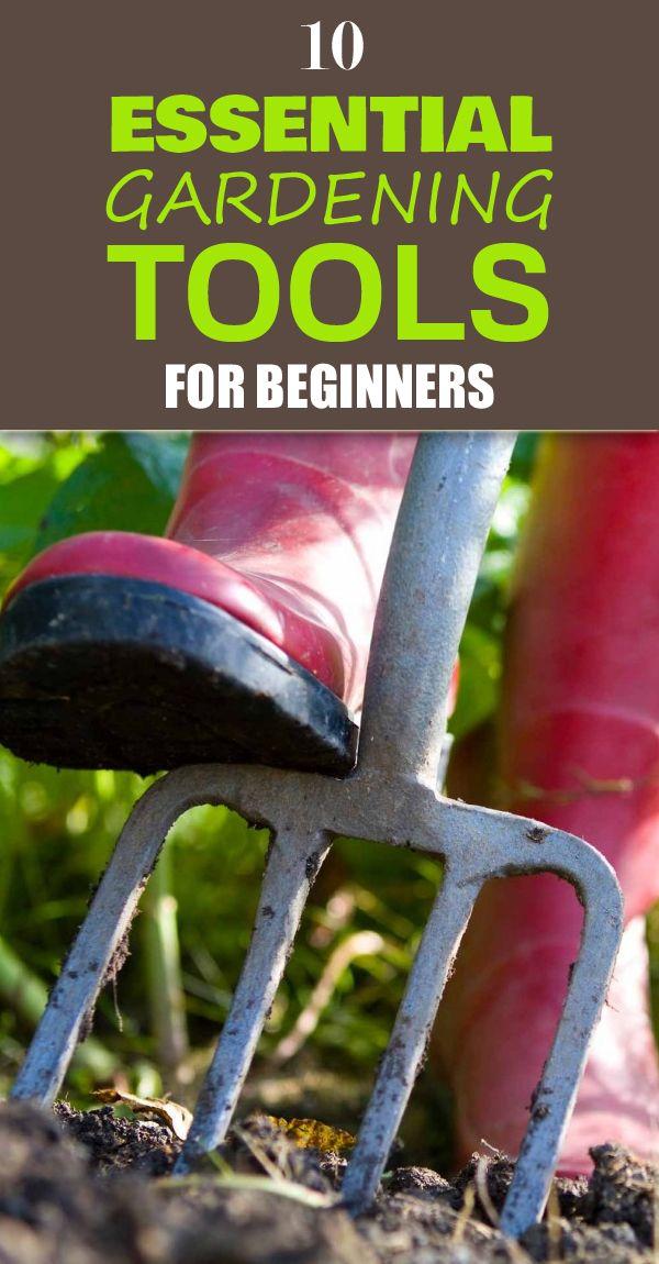 Best 25 gardening tools ideas on pinterest garden tools garden tool organization and - Gardening for beginners ...