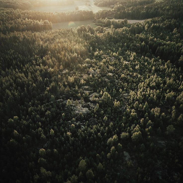 "567 gilla-markeringar, 6 kommentarer - Per Ågren (@peragren) på Instagram: ""Got a drone. I have no idea of what I'm doing."""
