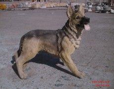 Wolf Dog Statue