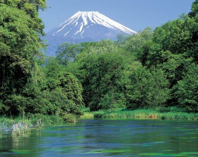 都心からたったの2時間!日本三大清流の一つ「柿田川湧水群」の透明度がスゴい | RETRIP[リトリップ]