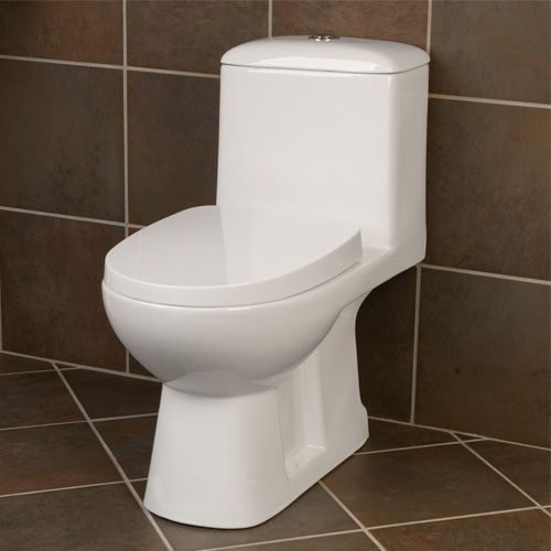 Ahren Dual Flush Elongated Siphonic REAR OUTLET One-Piece Toilet