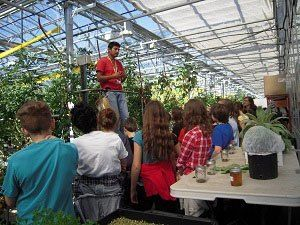 Agricultura urbana é tendência mundial | Endeavor Brasil