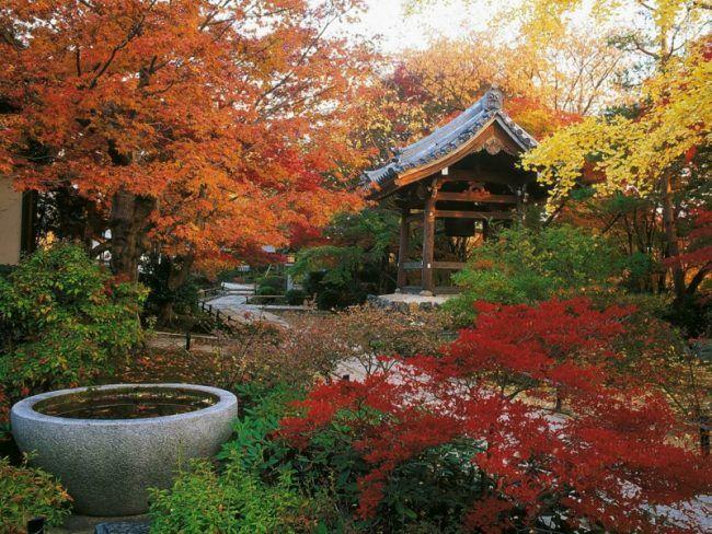 Awesome Kreieren Sie eine Insel der Ruhe wir zeigen Ihnen wie Sie einen japanischen Garten anlegen Planen Sie den perfekten Zen Garten Schritt f r Schritt