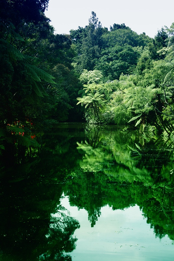 Pukekura Park, not far from the city centre in New Plymouth. It's an absolute gem! New Zealand
