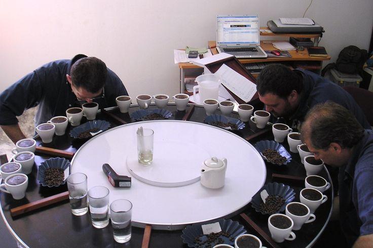 Il caffè dalla A alla Z un'intervista in forma di abbecedario a Leonardo Lelli, torrefattore