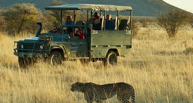 Choose the perfect African #safari experience! Read more...
