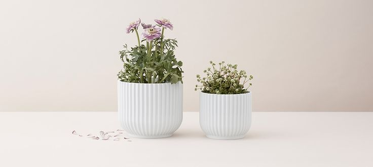 Flowerpot_1.jpg