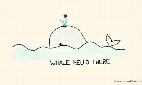 whale puns | Tumblr                                                                                                                                                      More