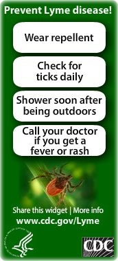 Lyme disease is caused by the bacterium Borrelia burgdorferi and is transmitted to humans through the bite of infected blacklegged ticks. Typical symptoms include fever, headache, fatigue, and a characteristic skin rash called erythema migrans. If left untreated, infection can spread to joints, the heart, and the nervous system.