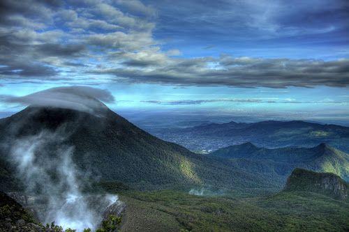 Mt. Gede - Pangrango National Park
