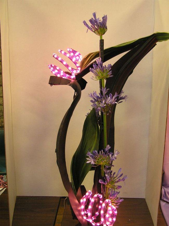 12 best floral reflective design images on pinterest