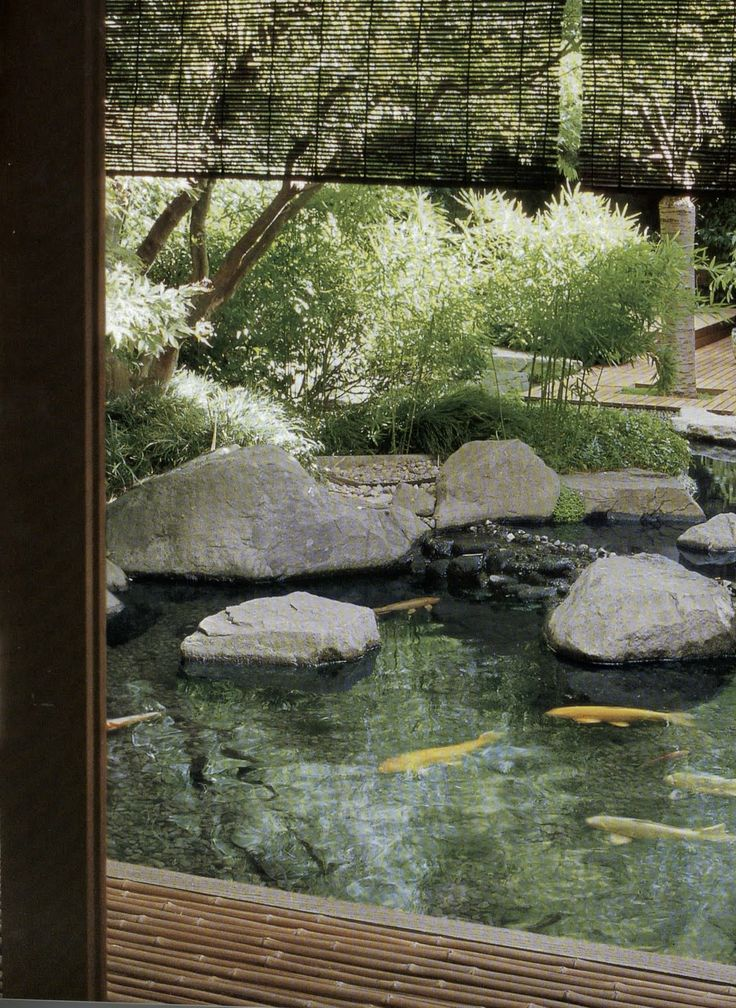 401 Best Images About Water Gardens On Pinterest | Gardens