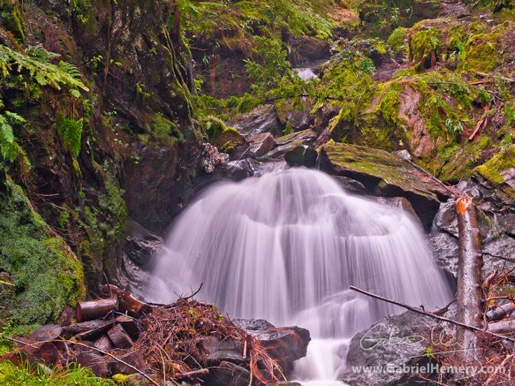 Waterfall and trees at Pucks Glen