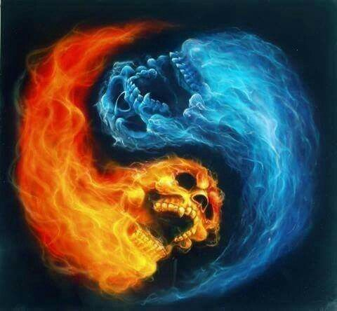 Fire ice skulls skulls pinterest skulls and yin yang for Fire and ice tattoo shop