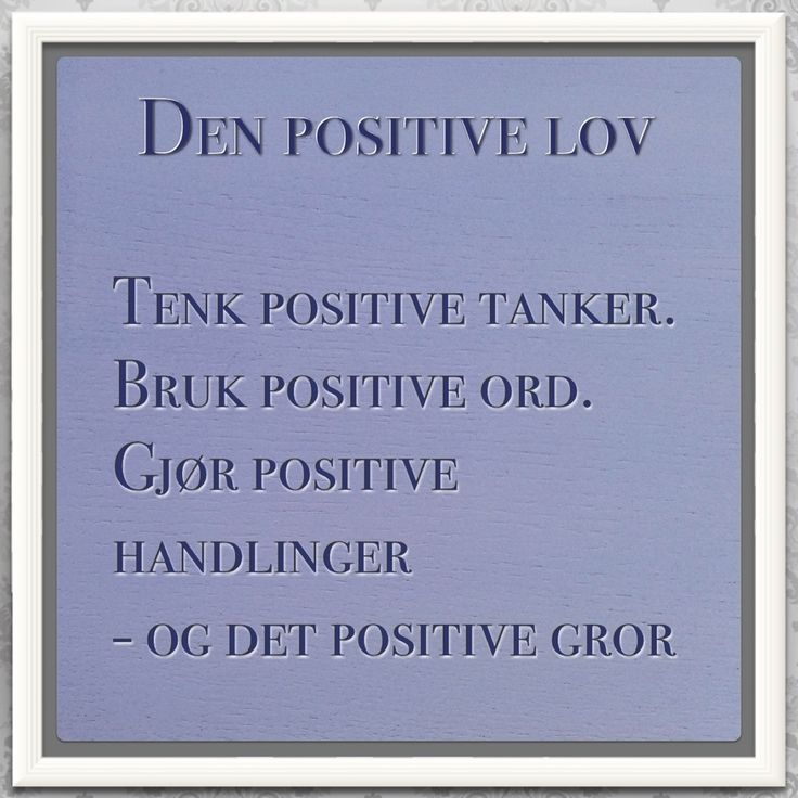Den positive lov