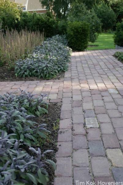 Landelijke tuin rondom vrijstaande woning Mijnsheerenland » Hoveniersbedrijf Tim Kok