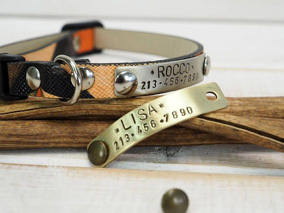 Hey, I found this really awesome Etsy listing at https://www.etsy.com/listing/533014625/personalized-cat-collar-cat-collar-dog