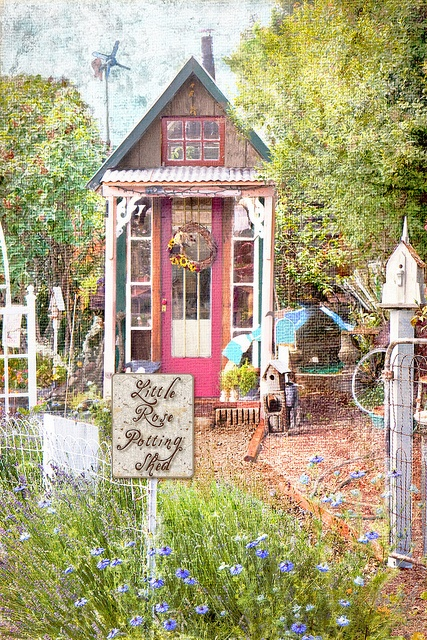 this cute shed is in gold hill oregon love this gift store