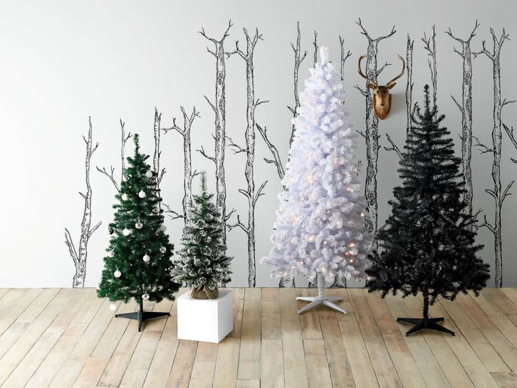 We have loads of Christmas trees on offer to suit everyone