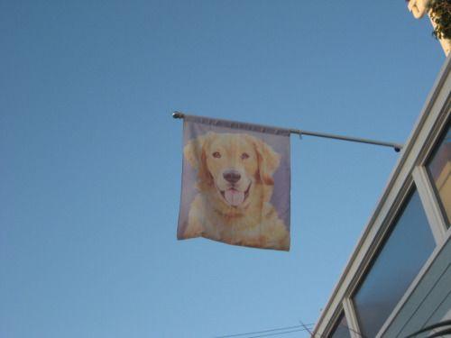 the only flag i pledge allegiance to