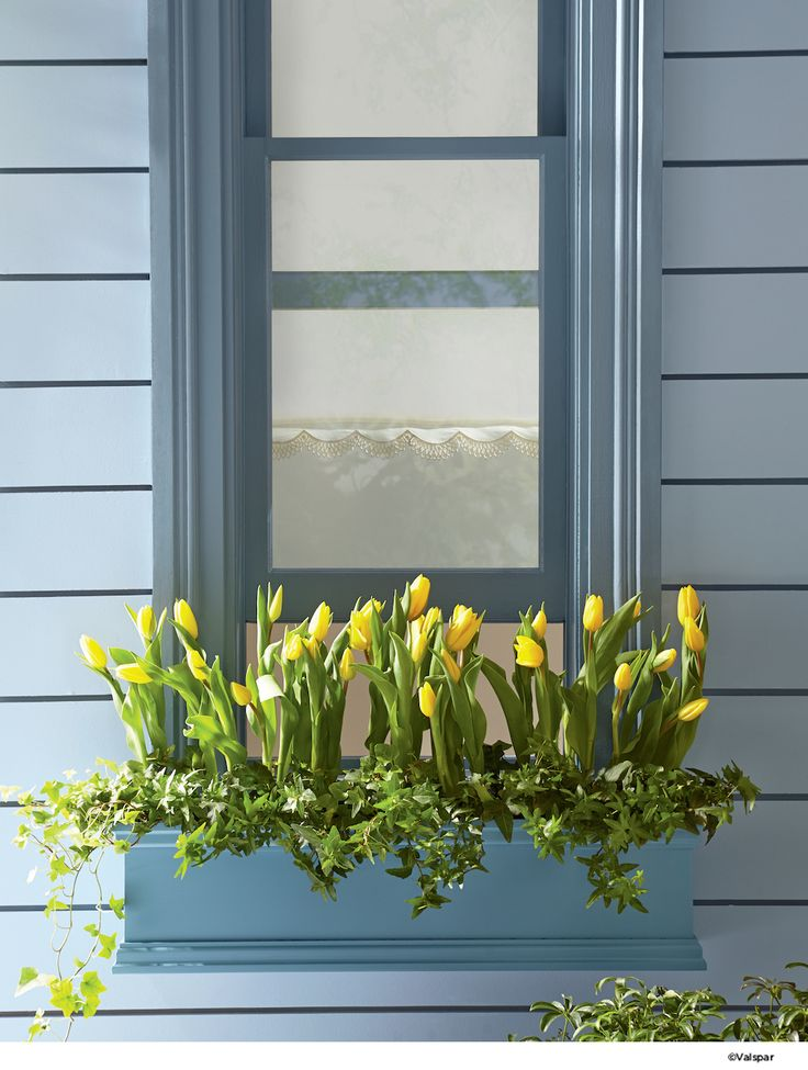 Colorful windowsills can compliment your flowers.