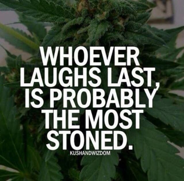 Best 25 Funny weed quotes ideas on Pinterest  Stoner