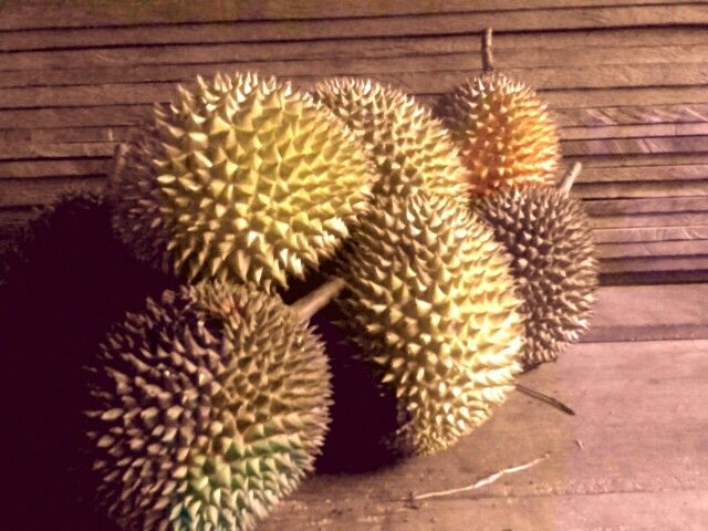 Durian's