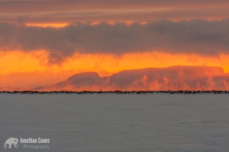 The sunrise and mist make the Sleeping Giant look like its on fire