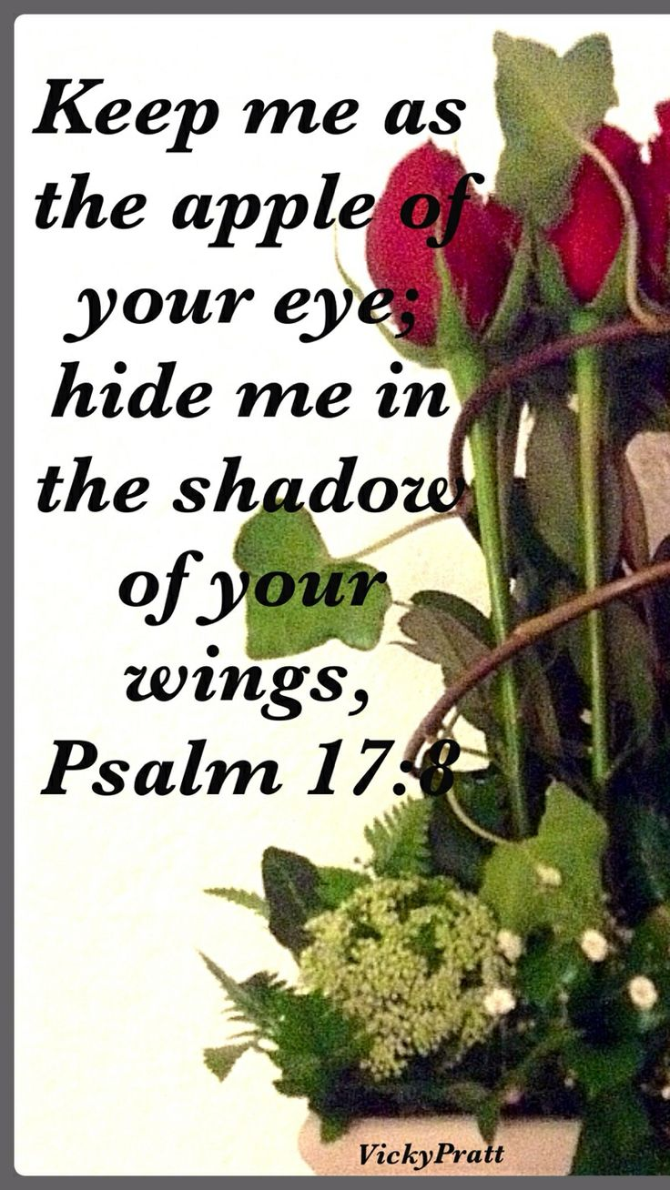 Psalm 17:8 faith Bible scripture verse for spiritual inspiration.  I love how David asked God to keep him close and carefully watch over him.