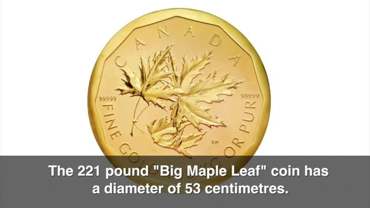 big maple leaf bode museum | Massive 'Big Maple Leaf' gold coin worth millions stolen from ...