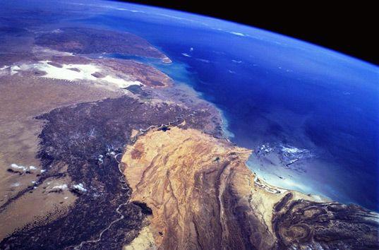 Ученые показали на видео, что ждет Землю после исчезновения людей (ВИДЕО)