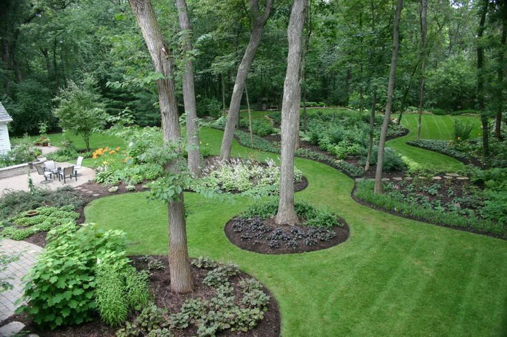Ideas for landscaping around trees in the middle of your landscape design.