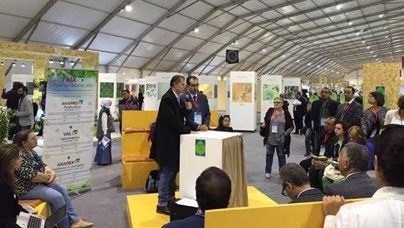 Clima. Qui Marrakech: l'agricoltura bio può fermare il cambiamento climatico   e-gazette