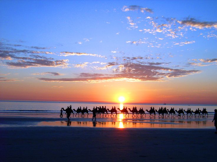 Take a memorable camel ride on Cable Beach, Broome, Western Australia