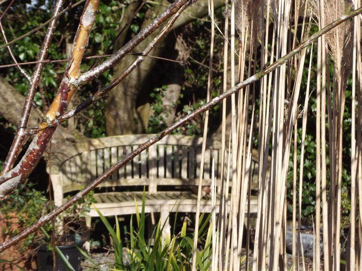 Garden Bench in autumn