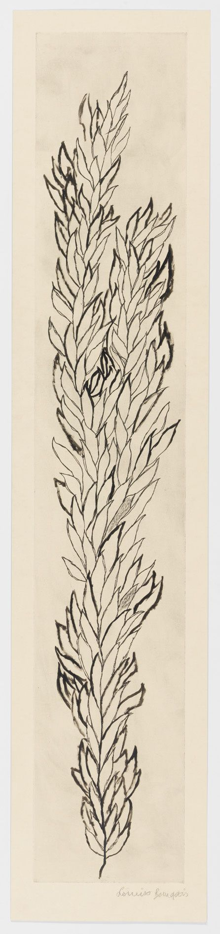 Would make a beautiful embroidery pattern.  Leaves , Louise Bourgeois