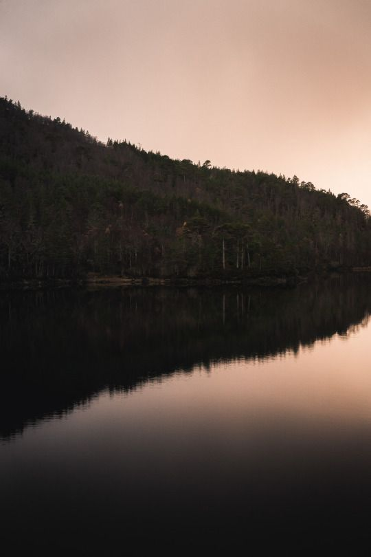 The loch at Glen Affric  By Frederick Ardley Photography